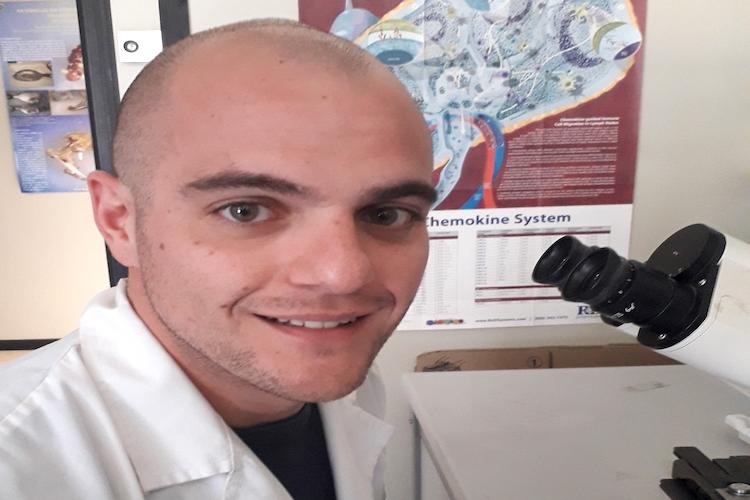 Lavoro di un dottorando Unime pubblicato su Nature Scientific Reports
